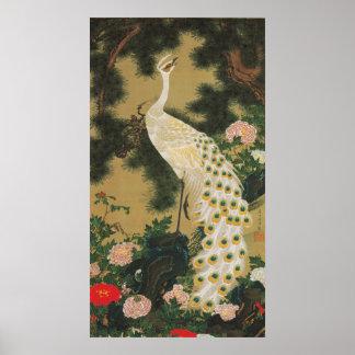 9. 老松孔雀図, 若冲 Old Pine-tree and Peacock, Jakuchu Posters