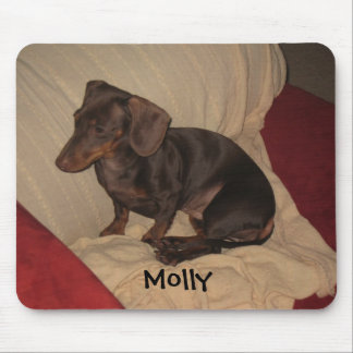 9-11-10 004 Molly Mouse Pads