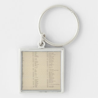 9 Congressional Districts Silver-Colored Square Key Ring