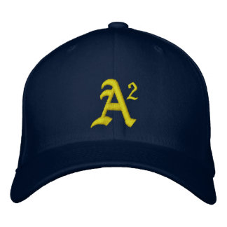 A2 MICHIGAN EMBROIDERED HAT