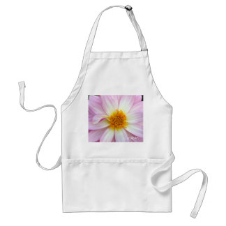 a2 Pale Pink Zinnia Adult Apron