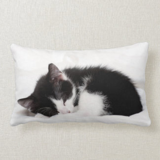 A 9-Week Old Kitten Sleeping (Felis Catus) Lumbar Pillow