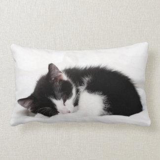A 9-Week Old Kitten Sleeping (Felis Catus) Throw Cushions