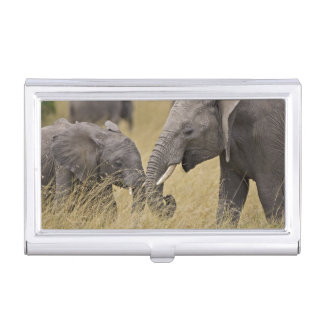 A African Elephant grazing in the fields of the Business Card Holder