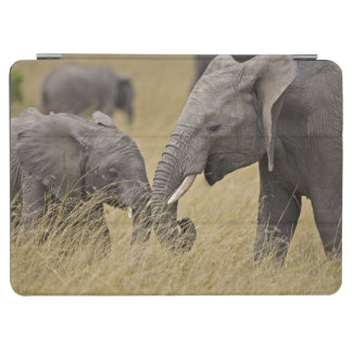 A African Elephant grazing in the fields of the iPad Air Cover