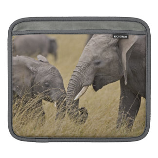 A African Elephant grazing in the fields of the iPad Sleeve