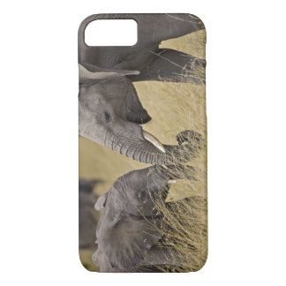 A African Elephant grazing in the fields of the iPhone 8/7 Case