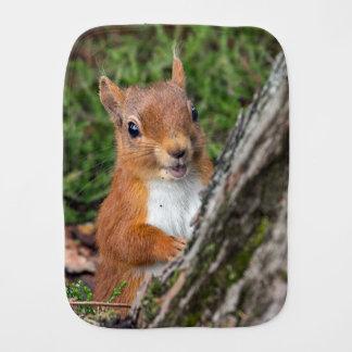 A baby red squirrel burp cloth