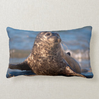 A baby seal coming ashore in Children's Pool Lumbar Cushion