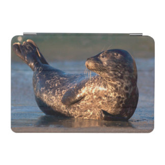 A baby seal lifting it's tail iPad mini cover