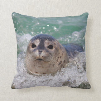 A baby seal surfing cushion