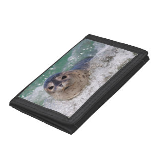 A baby seal surfing tri-fold wallets