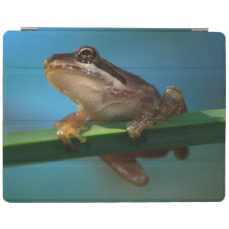 A Baby Tree Frog iPad Cover