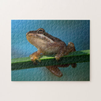 A Baby Tree Frog Jigsaw Puzzle
