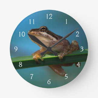 A Baby Tree Frog Round Clock