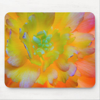 A back-lit, glowing begonia blossom mouse mat
