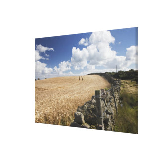 A Barbed Wire Fence Built Along A Stone Fence Canvas Print