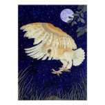 A Barn Owl in flight Poster
