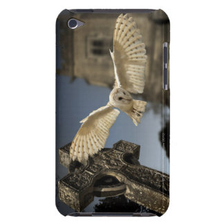 A Barn Owl (Tyto alba) in a graveyard in North iPod Touch Cover
