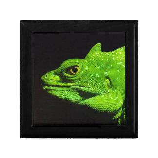 A Basilisk Lizard Gift Box