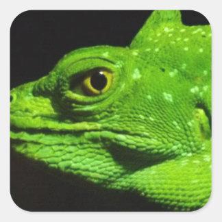 A Basilisk Lizard Square Sticker