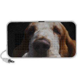 A Basset Hound resting his head Notebook Speakers