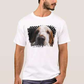 A Basset Hound resting his head T-Shirt