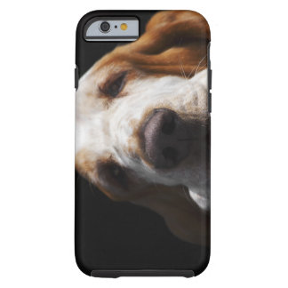 A Basset Hound resting his head Tough iPhone 6 Case