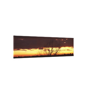 A Bayou Sunset by Leslie Peppers Stretched Canvas Print