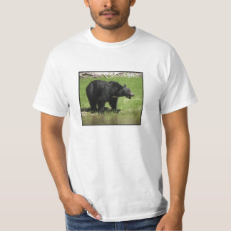 A Bear Bill Of Rights Shirt