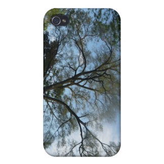 A Beauiful Tree Filled Landscape iPhone 4 Cases