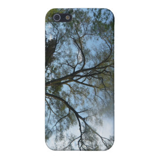 A Beauiful Tree Filled Landscape iPhone 5/5S Covers