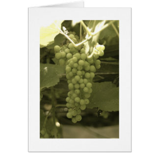A beautiful bunch of grapes card