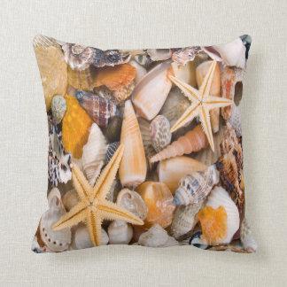 A Beautiful Collection of Seashells on a Cushion. Cushion