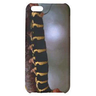 A beautiful Colored Caterpillar iPhone 5C Case