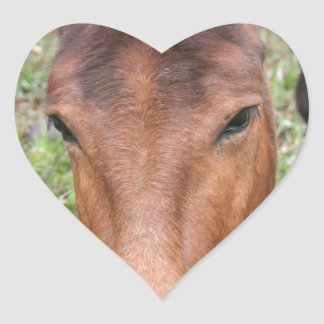 A Beautiful Grazing Horse Heart Sticker