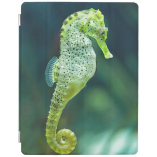 A Beautiful Knysna Seahorse iPad Cover