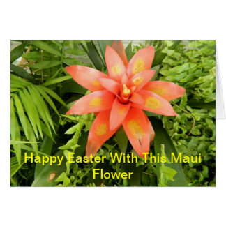 A Beautiful Orange With Yellow Flower Greeting Card