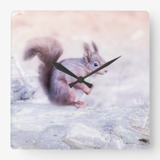 A beautiful Red Squirrel Square Wall Clock