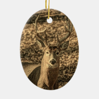 A beautiful rustic whitetail deer ceramic oval decoration