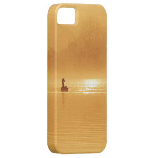 A beautiful silhouette of a swan at sunrise iPhone 5 covers