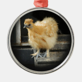 a beautiful Silkie Bantam Chicken picture. Silver-Colored Round Decoration