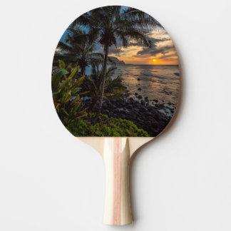 A beautiful sunset 2 ping pong paddle