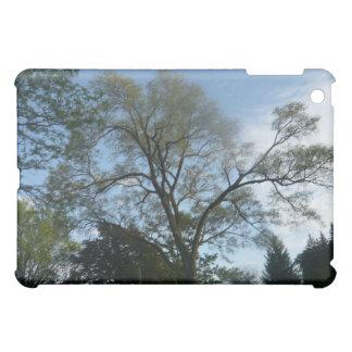 A Beautiful Tree Filled Landscape iPad Mini Cases