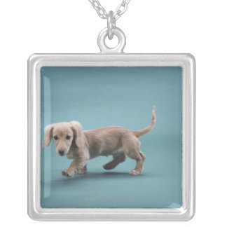 A beige small dachshund walking square pendant necklace