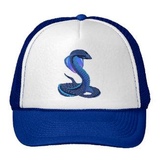 A Big Blue Snake Hat