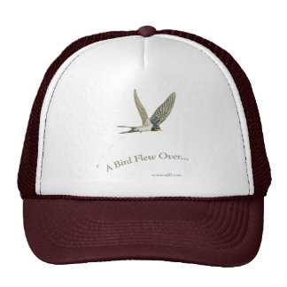A-Bird-Flew-Over Hats
