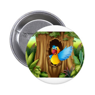 A bird in a tree hollow 6 cm round badge