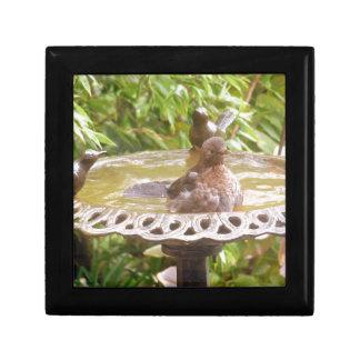 A Bird In The Bath Small Square Gift Box