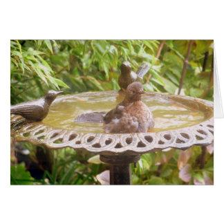 A Bird In The Bath Greeting Card